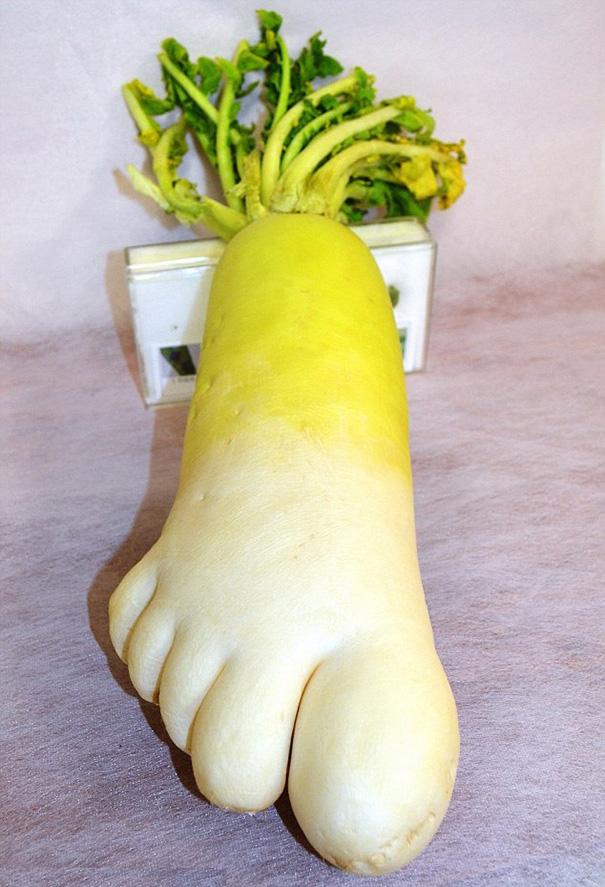 20-Frutas-y-Verduras-con-las-Formas-mas-divertidas-que-hayas-visto-Nunca-06