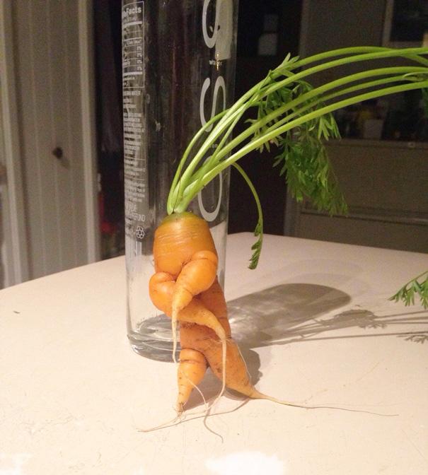 20-Frutas-y-Verduras-con-las-Formas-mas-divertidas-que-hayas-visto-Nunca-08