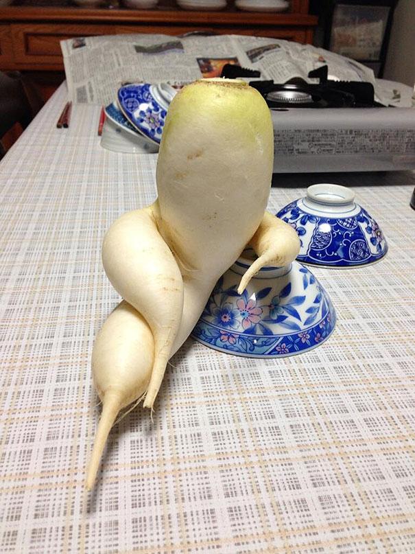 20-Frutas-y-Verduras-con-las-Formas-mas-divertidas-que-hayas-visto-Nunca-09