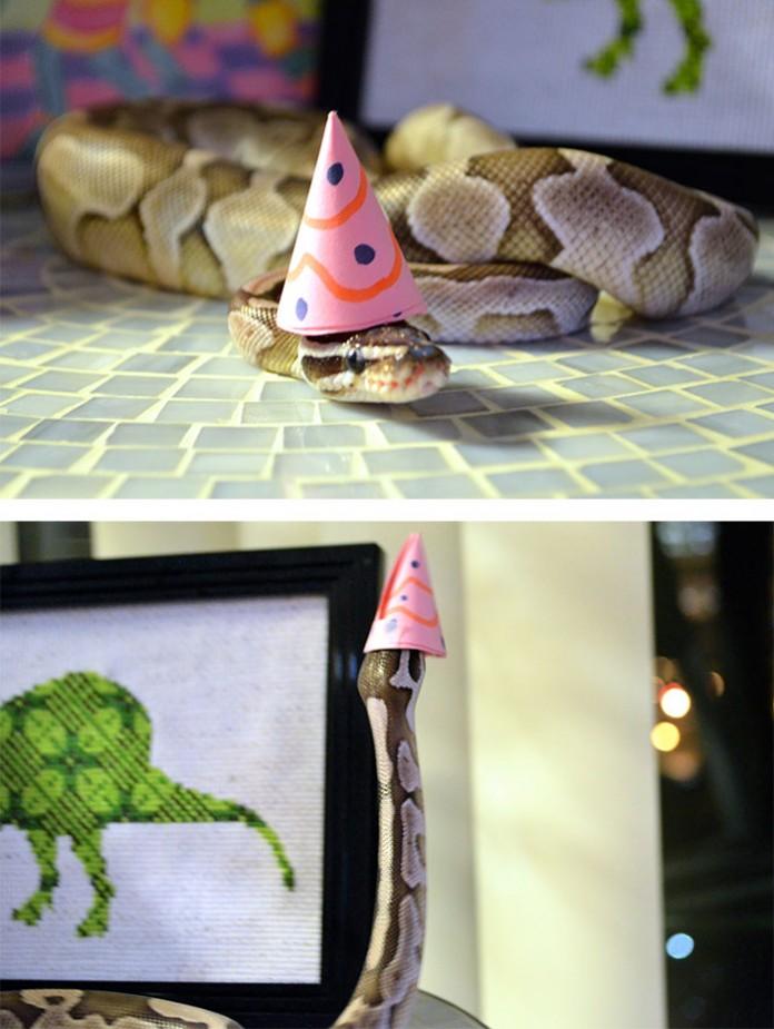 Si-te-dan-miedo-las-serpientes-ponles-un-gorrito-13-696x925