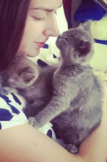 brianda-con-sus-dos-gatos-blogspot