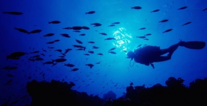 lo-que-este-buceador-encontro-en-el-fondo-del-oceano-es-terrorifico-01-696x358